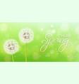 spring dandelion flower realistic green vector image vector image