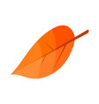 autumn leaf icon isometric style vector image vector image
