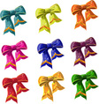 bow of multicolored with lag vector image vector image