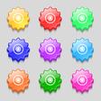 cogwheel icon sign symbol on nine wavy colourful vector image vector image