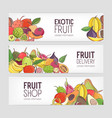 collection of horizontal banners decorated with vector image vector image