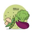 colorful poster fresh vegetables mushroom peas vector image vector image