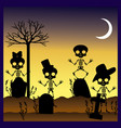 silhouettes of skulls in graveyard vector image vector image