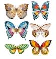 Watercolor butterflies vector image vector image