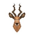 antelope head in pixel art style vector image vector image