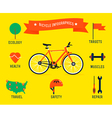 Bicycle Infographics vector image