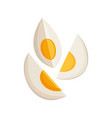 boiled and sliced egg cartoon egg isolated on vector image