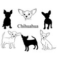 chihuahua set collection pedigree dogs black vector image vector image