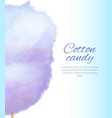 cotton candy banner with sweet floss spun sugar vector image vector image