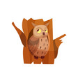 cute owlet sitting in hollow of tree vector image