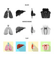 design of body and human icon set of body vector image