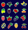 icons stickers of fruits and berries with a white vector image