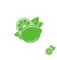 Lime Tropical fruit on white background vector image vector image