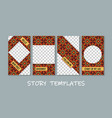 social media story templates collection vector image vector image