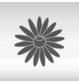 spa concept design vector image