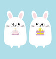 white bunny rabbit holding gift box cake funny vector image
