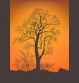 bare tree and bushe vector image