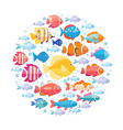 colorful aquarium fish set in circle vector image vector image