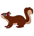 cute brown squirrel vector image vector image