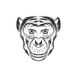 monkey face design vector image