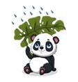 panda sitting under palm leaf