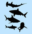 sharks animal gesture silhouette vector image vector image