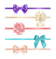 bundle of gorgeous realistic satin bows and vector image