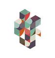 abstract geometric retro vintage isometric vector image vector image