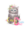 animal abc alphabet letter c cat cartoon for kids vector image