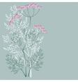 flowering meadow plant vector image vector image