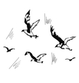 flying seagulls hand drawn vector image vector image