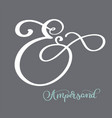 hand lettered flourish ampersands calligraphy vector image