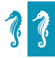 seahorse silhouette in blue and white colors vector image