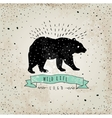 Vintage label bear Design for T-Shirt handmad vector image vector image