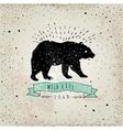 Vintage label bear Design for T-Shirt handmad vector image