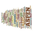 aspen nightlife text background word cloud concept vector image vector image