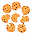chocolate cookies set vector image