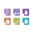 fruit color icon vector image vector image