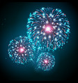 holiday festival blue and pink firework vector image vector image