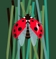 ladybug spreads its wings vector image vector image