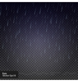 Rain drops on the transparent background Rainy vector image