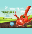 tomatoes slice splash realistic green eco vector image vector image