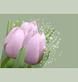 tulips on green vector image