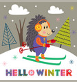winter poster with skiing hedgehog vector image