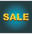 Inscription sale of lamps on a dark background vector image
