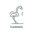 flamingo line icon linear concept outline vector image