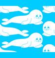fur seal white pattern small sea calf ornament vector image vector image