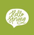 hello spring phrase handwritten with elegant vector image vector image