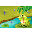 The sad frog in the pond vector image vector image