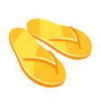 yellow flip flops vector image